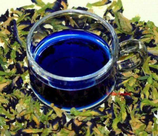 Церемония «Синяя ночь»